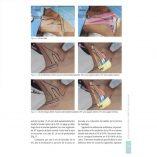 ergon_libro_acceso_sistema_nervioso_m3